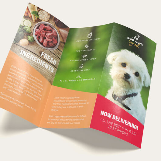 Brochures Marketing Materials